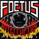 Foetus Interruptus: Thaw
