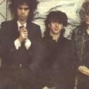 1983-jgthirlwell-immaculateconsumptives-4